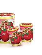 رب گوجه کلید دار 800 گرمی قدس